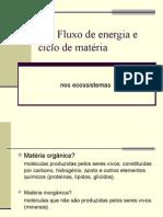 fluxo de energia e ciclo de matéria nos ecossistemas