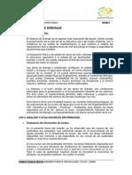 INFORME DE DRENAJE.pdf