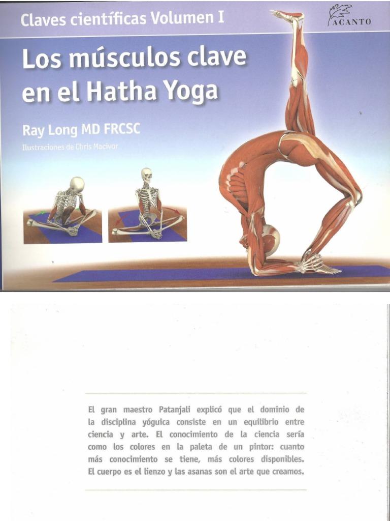 Los músculos clave del Hatha Yoga 2003.ppt