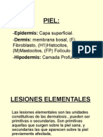2-lesioneselementales-121012100219-phpapp01.ppt