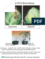 Teknologi DNA Rekombinan.pdf