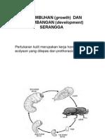 Kul_Entomologi _7 2012(1).ppt