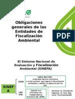 OBLIGACIONES-GENERALES-DE-LAS-EFA_2015.ppt