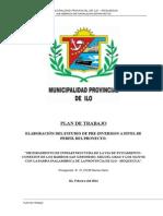Plan de Trabajo ILO 2014