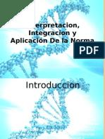 Interpretacion, Integracion y Aplicación de La Norma