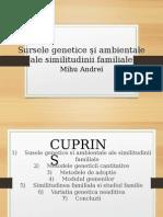 Similitudinea (1).pptx