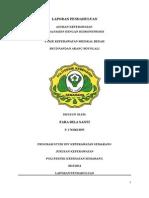 LAPORAN PENDAHULUAN HIDRONEFROSIS.docx