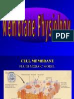 membran fisiologi
