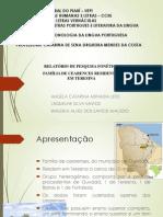 apresentação relatorio