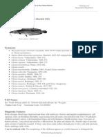 FAO Fisheries & Aquaculture - Species Fact Sheets - Clarias Gariepinus (Burchell, 1822)