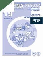 CADENA 19 Cultivos Hidropónicos.fh10 463 Cadena 19 Cultivos Hidroponicos