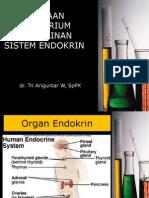 Pemeriksaan Laboratorium Pada Kelainan Sistem Endokrin