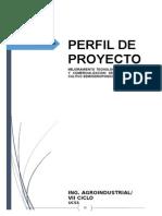 """perfil de proyecto """" hortalizas e hidroponia"""""""