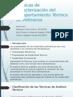 Técnicas de Caracterización Del Comportamiento Térmico de Polímeros