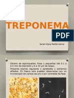 Treponema y Mycobacterium