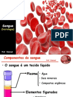Sangue-histologia