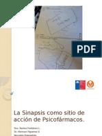 3. La Sinapsis como sitio de acción de Psicofármacos. Fontanez, Figueroa.