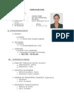 Modelo Curriculum Vitae Pucallpa