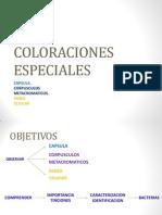 MICROCOLORACIONES.pdf