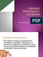 cuidados_prenatales