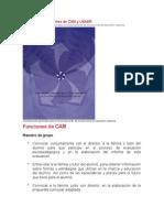 Funciones de Docentes de CAM y USAER