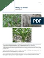 Sintomatologia de Los Diferentes Herbicidas en Maiz