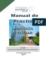 Manual de BCyM 2015 - I