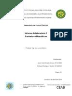 Informe 2 Contadores monolíticos
