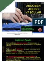 Abdomen a Gu Do Vascular 2009