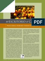 Plantas Exoticas, Introducidas e Invasoras en La Argentina (Bertonatti)