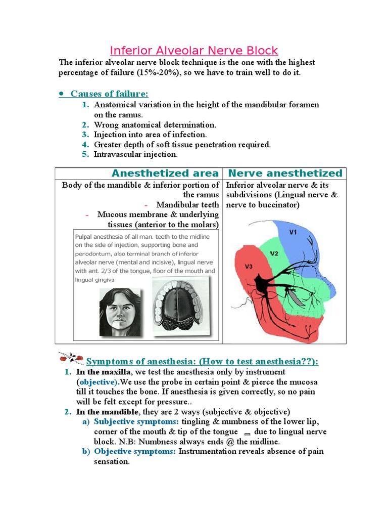 inferior alveolar nerve block
