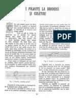 27046253-cusaturi-traditionale-1.doc