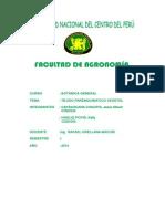 TEJIDO PARENQUIMATICO VEGETAL.pdf