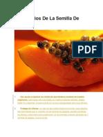 6 Beneficios de La Semilla de Papaya