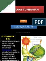 Biologi - Fisiologi Tumbuhan