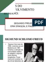 4_Fases Do Desenvolvimento_ERIK ERIKSON Piaget e Freud RESUMO