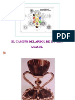 caminoarbol-120713100702-phpapp02