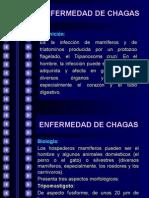 4.1. Enfermedad de Chagas - Mc. José Barletta Villarán