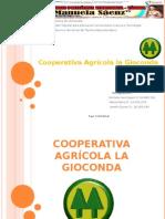 COOPERATIVA GEOCONDA .pps