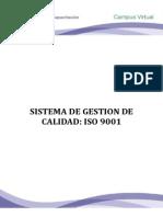 Leccion 8 Fund Hseq II. Sist g.calidad 9001 (1)