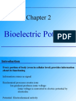 BM 2 Electric Potential