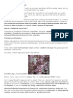 How Are Coral Reefs Formed.docx