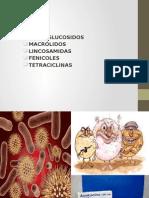 Farmacologia - Aminoglucosidos, Macrólidos, Lincosamidas, Fenicoles y Tetraciclinas