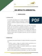 IMPACTO AMBIENTAL AYANCOCHA