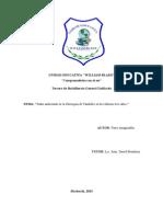 Monografia Caratula-Indice