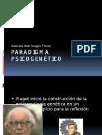 Paradigma Psicogenético.pptx