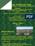 Manejo y Conservacion de Bosques Andinos