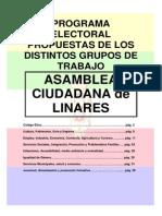 Programa Electoral Grupos de Trabajo Asamblea Ciudadana de Linares, Distintas Propuestas