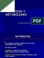 12. Nutricion