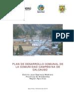 Plan Desarrollo Comunidad Calcauso Dic10.PDF (1)